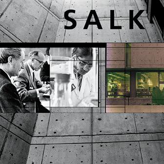 Blik-Business-Salk-LandingThumb