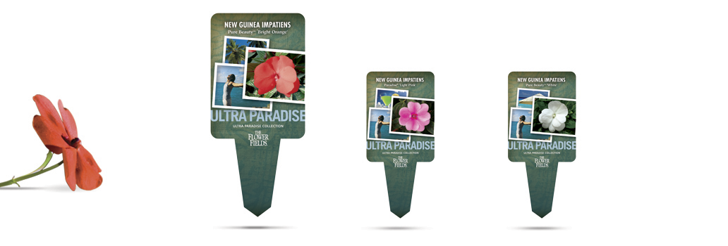 The Flower Fields plant tag design