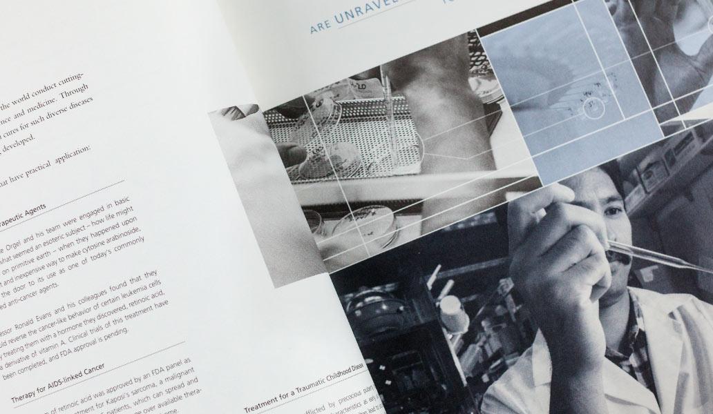 Salk institute brochure detail