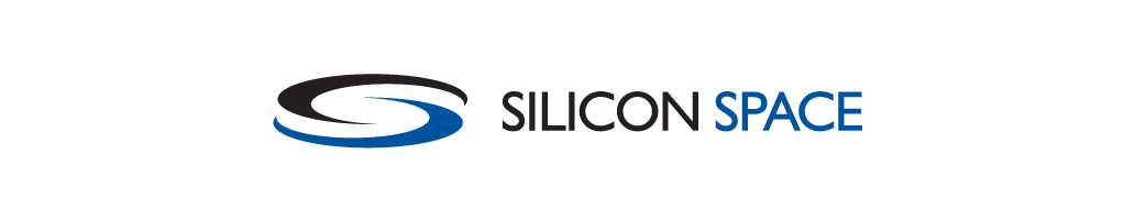Silicon Space Identity design