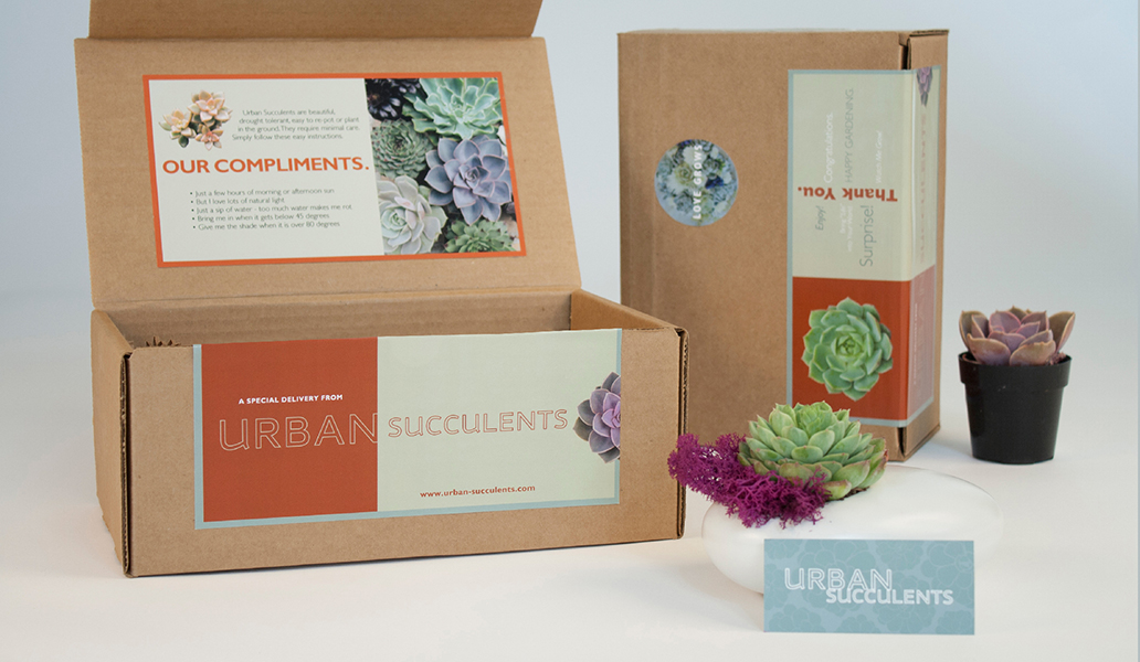 Urban Succulents Packaging Design